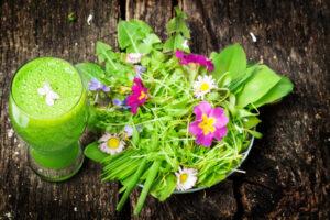 Grner Smoothie und Salat von Wildkrutern
